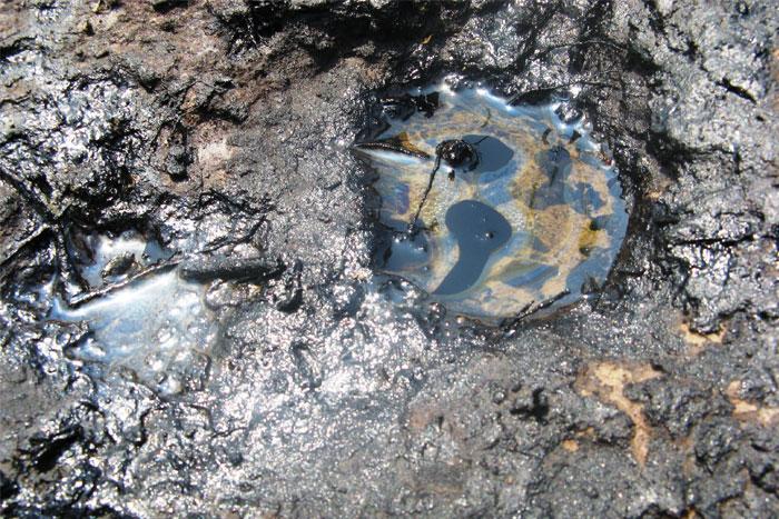 Загрязнение почв в Малоярославском районе калужской области